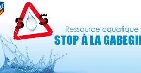Ressource aquatique Stop à la gabegie !